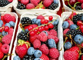 Owoce ekologiczne