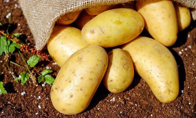 Ziemniaki a gluten